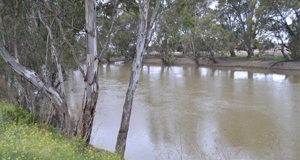 FloodMitigation-FI